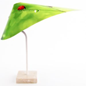 Ladybug-w-2